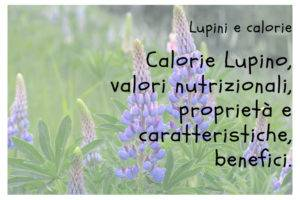 Calorie Lupini