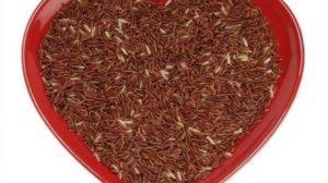 Lievito di riso rosso